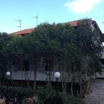 Vila ELZA Pefkohori