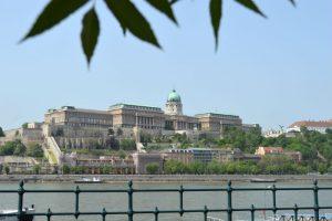 Budimpešta, Nova godina Budimpesta